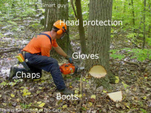 How to Properly Use a Chainsaw